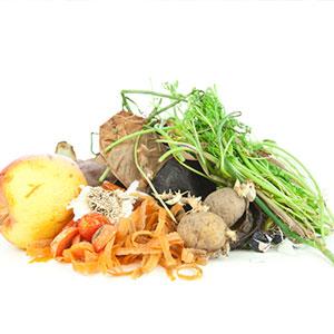 Stressfrei [gem. fest, nicht gefährlich] - Was darf nicht hinein: Küchen- und Speiseabfälle